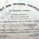 Scout-Dog-Training-Web-thumb