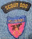 Dog School, Dog Career