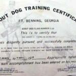 Scout-Dog-Training-Web-thumb