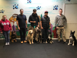 Students with their dogs - Dog School NY